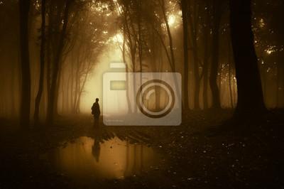 Człowiek w lesie, odzwierciedlając w stawie po deszczu