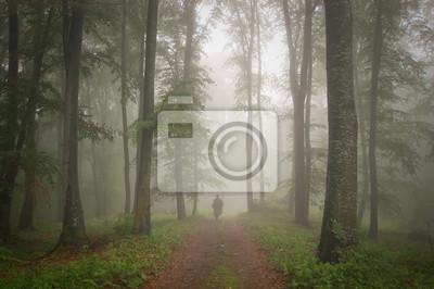 Człowiek w pięknym lesie z przeciwmgielnych w lecie