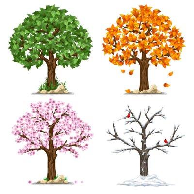Naklejka Cztery pory roku