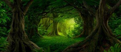 Naklejka Deep tropical jungles of Southeast Asia in august