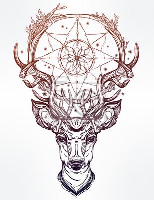 Naklejka Deer głowy i łapacz snów.