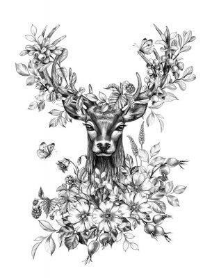 Naklejka Deer with Flowers, Berries and Butterflies Pencil Drawing