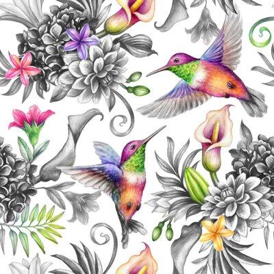 Naklejka digital watercolor botanical illustration, seamless floral pattern, wild tropical flowers, humming birds, white background. Paradise garden day. Palm leaves, calla lily, plumeria, hydrangea, gerber