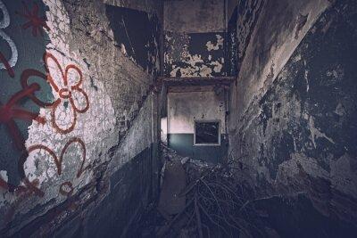 Naklejka Dilapidated, scary houses, crumbling walls