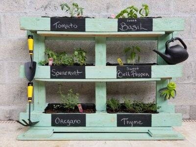 Naklejka DIY Herb garden