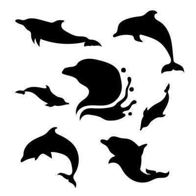 Naklejka Dolphin wektor zestaw