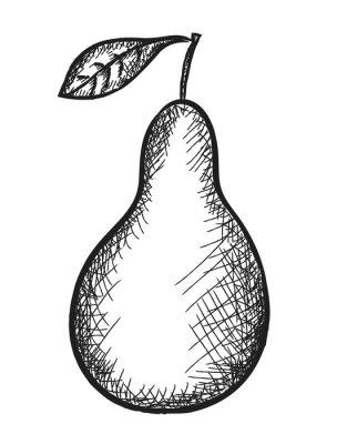 Naklejka doodle gruszki