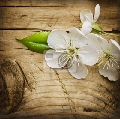 Drewno tle z wiosny kwiat