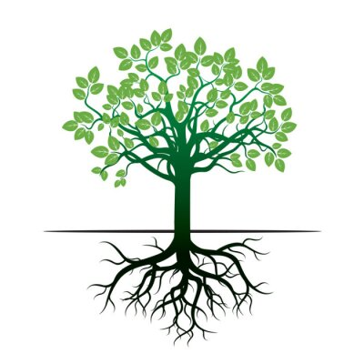 Naklejka Drzewa i korzenie. Ilustracja wektora.