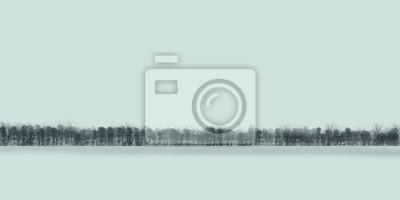 drzewa w zimie / minimalistyczny malowania / ilustracji