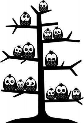 Naklejka drzewo pełne sowy