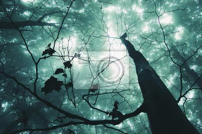 drzewo w magicznym lesie z zielonym mgle