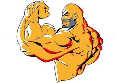 Naklejka duże bicepsy, ilustracja, kolor, logo, odizolowane na białym