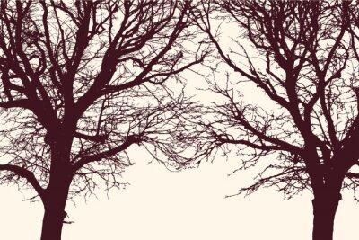 Naklejka dwa drzewa
