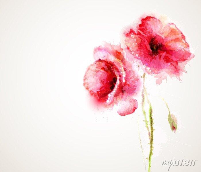 Naklejka Dwa kwitnienia czerwone maki. Powitanie-card.