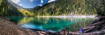 Naklejka Dziewczyna Podziwia Scenic widok na góry i jezioro w Ritsa Reserve w Abchazji