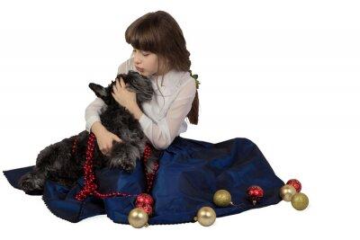 Dziewczyna w otoczeniu ozdób choinkowych całuje psa Sznaucer miniaturowy. Pojedynczo na białym tle