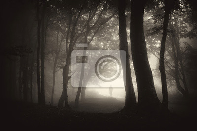 dziwna postać osoby man walking w ciemnym lesie z mgły