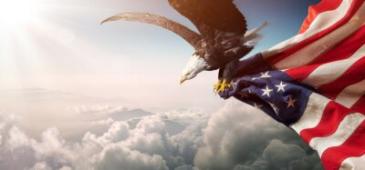 Naklejka Eagle With American Flag Flies In Freedom