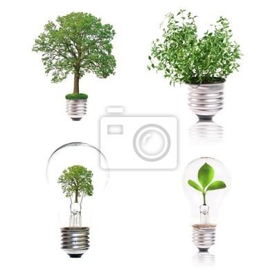 eco pojęcie: odmiana żarówek z zakładu wewnątrz
