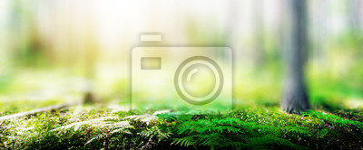 Naklejka Ecology background