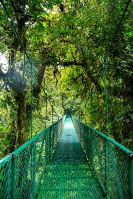Naklejka eine Brücke im Regenwald w Kostaryce