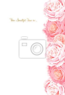 Eleganckie kwiaty ramki róż barwnych. Sk? Ad z kwiatami ga ?? zie i list z miejsca na tekst na bia? Ym tle.