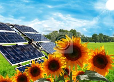 Naklejka Energia rinnovabile-Pannelli Solari