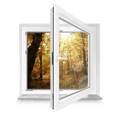Naklejka Fenster 28