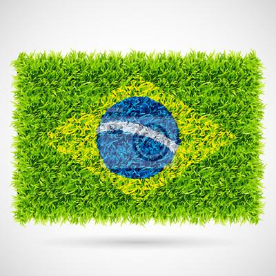 Flaga Brazylii trawy