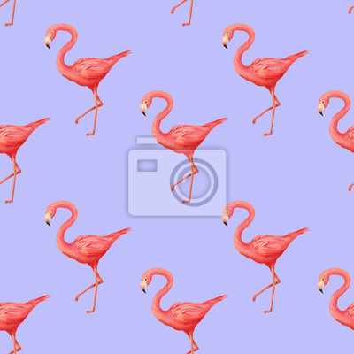 Flamingo, bez szwu backfground, wzór