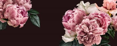 Naklejka Floral banner, flower cover or header with vintage bouquets. Pink peonies, white roses isolated on black background.