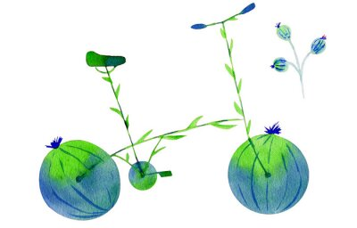 Naklejka Flower bike. Hand drawn watercolor illustration on paper. Green and blue bicycle flower with calyx round fruit buds briar and leaves. Isolated on white background