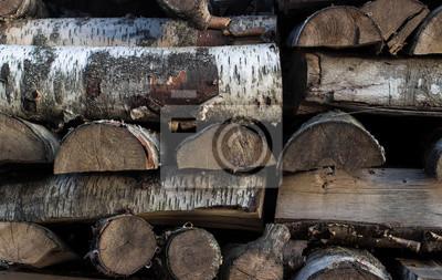 Fragment brzozy i sosny stos drewna opałowego