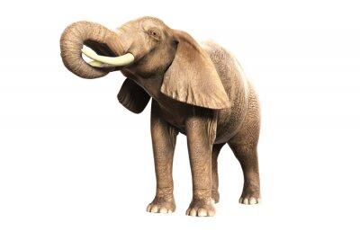 Naklejka Freigestellter Elefant mit erhobenem Russel (gerendertes Bild)