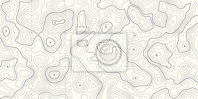 Naklejka Geographic topographic map grid. Topography map background. Vector banner.