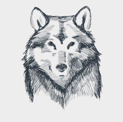 Naklejka Głowa wilka grunge wyciągnąć rękę szkic ilustracji wektorowych
