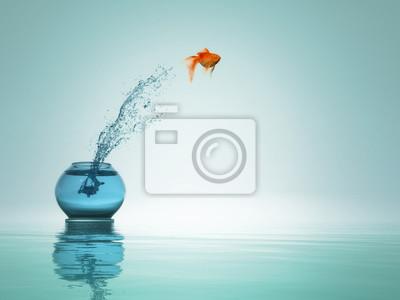 Naklejka Goldfish jump to the sea