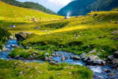 Naklejka Górskie rzeki