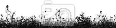 Naklejka Grass natural silhouette as background
