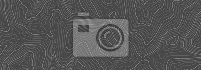Naklejka Gray topographic line contour map background, geographic grid map