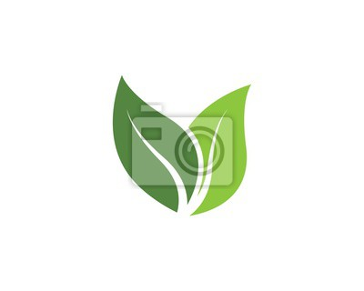Naklejka green leaf ecology nature vector icon