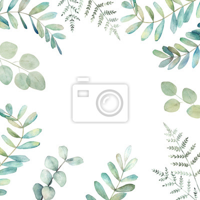 Greenery floral card with eucalyptus and fern  branches . Watercolor botanical template. Hand drawn illustration