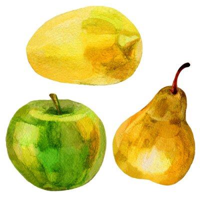 Naklejka Gruszka, banan wyciągnąć rękę akwarela ilustracja na białym tle