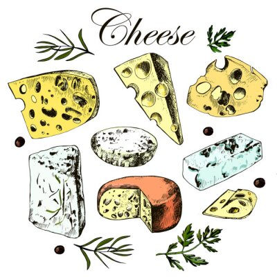 Naklejka hand drawing set with different cheeses