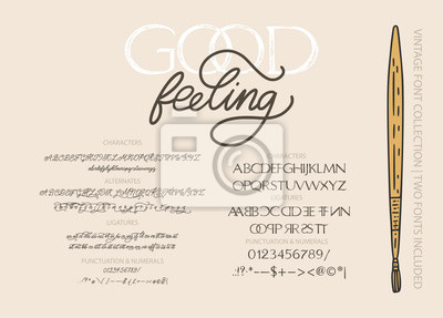 Hand drawn calligraphic vector duo font. Distress grunge texture. Modern script calligraphy type pair. ABC typography latin alphabet.