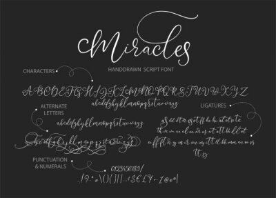 Hand drawn vector alphabet ABC with alternates, ligatures, letters, numbers, symbols. For calligraphy, lettering, hand made quotes.
