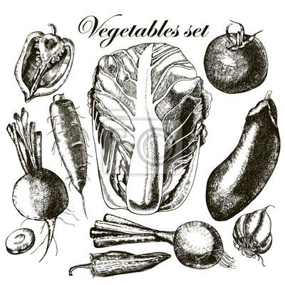 Handmade pracy - zestaw warzyw. Wektor.