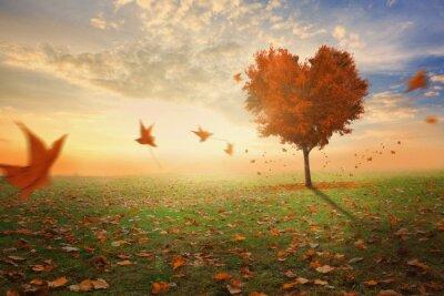Naklejka Heart shaped tree during fall