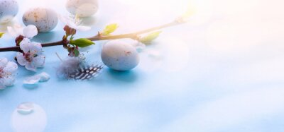 Holiday Easter banner background; Spring tree flowers and Easter eggs on sunny light  wooden background